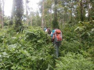 rinjani trek price